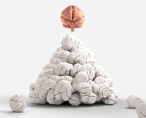 Mindsets Matter Brain